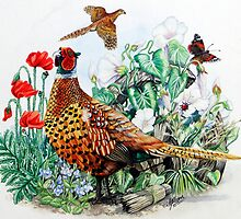 Pheasant by Robert David Gellion