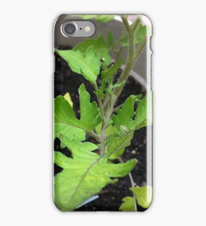 Live Green iPhone Case/Skin