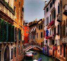 Ah, Venezia! by Lois  Bryan