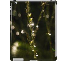 Rosetta iPad Case/Skin