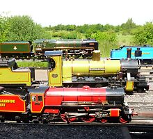 My Train Set (I Wish ! ) 2 by LumixFZ28
