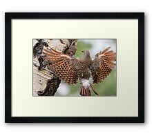 Flicker Breakfast On The Way, with Flare Framed Print