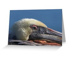 Keeping an Eye Out Greeting Card