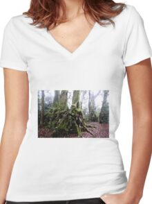 Antarctic Beach Tree Springbrook Women's Fitted V-Neck T-Shirt