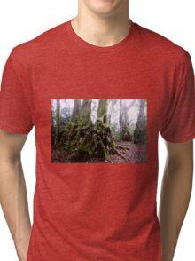Antarctic Beach Tree Springbrook Tri-blend T-Shirt
