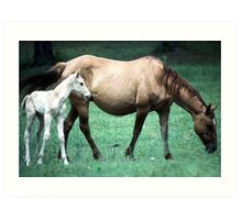 Mama and the Colt Art Print