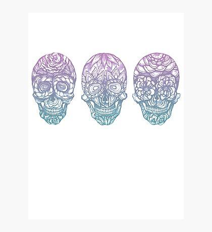 Candy Skulls Photographic Print