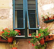 A window framed with green shutters and flowers by creativetravler