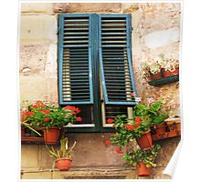 A window framed with green shutters and flowers Poster