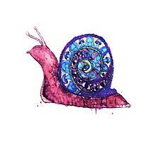 Trippy Snail Photographic Print