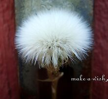 Make a Wish weed by Myillusions