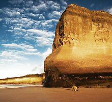 """Walk the Dog"",Anglesea Back Beach,Great Ocean Road. by Darryl Fowler"