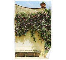 PINK and White Climbing ROSES in the Garden Poster