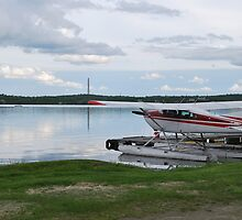 Plane on Whitewater Lake by Janet Young