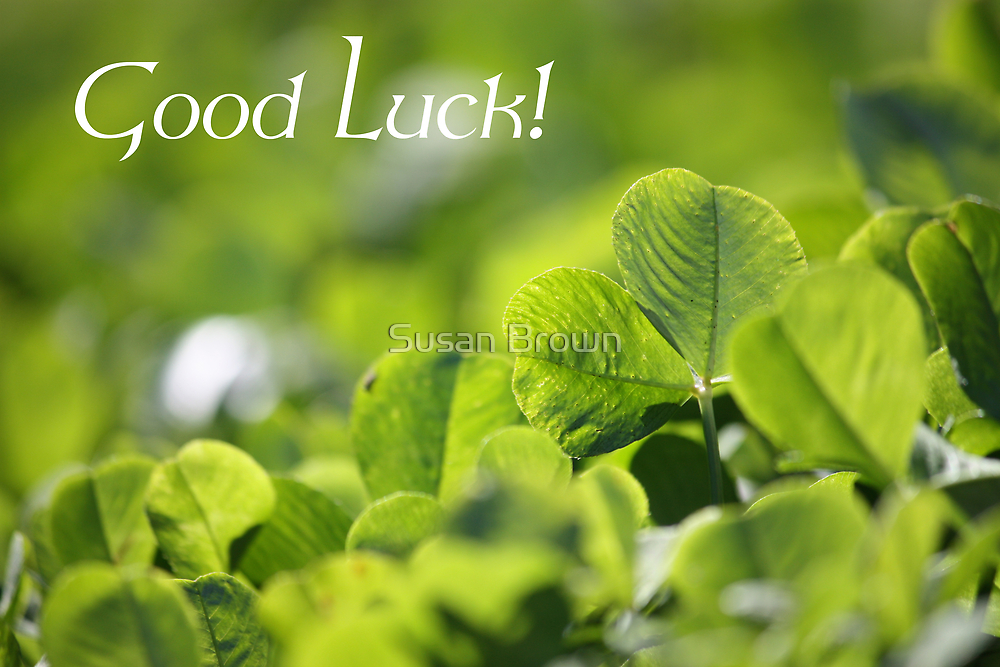 Good Luck - Greet Card by Susan Brown
