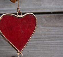 heart by Adriana Wasyk