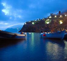 The Cinque Terre - Manarola, Italy by Bob  Perkoski
