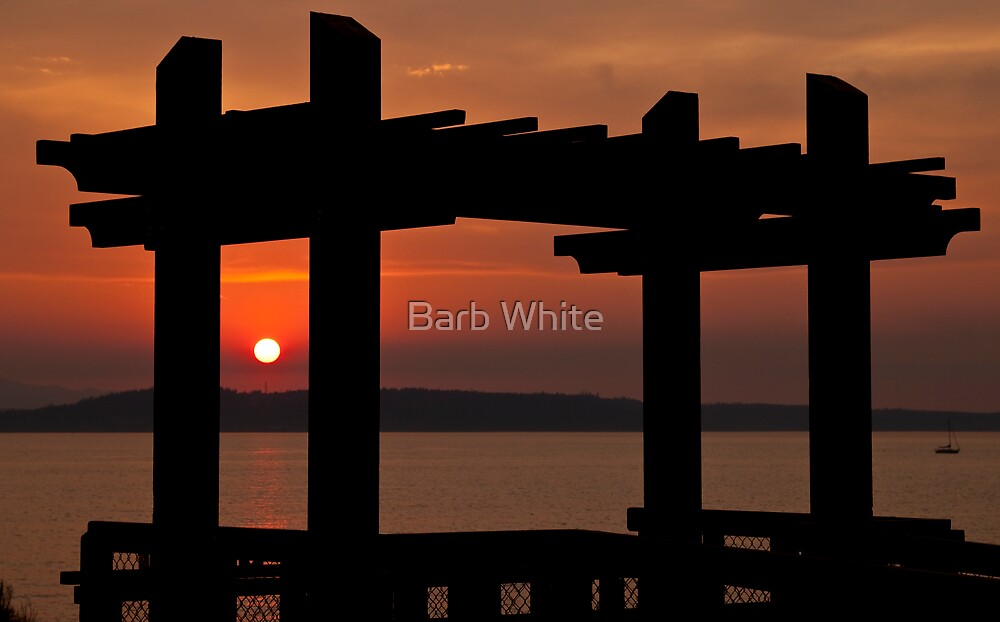 Arbor Sunset by Barb White