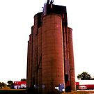 Grain Elevators 3 by Barry W  King