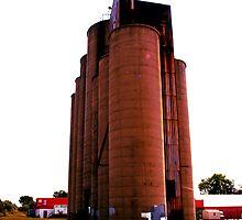 Grain Elevators 3 by Barry W  King