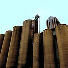 Grain Elevators 4 by Barry W  King