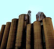 Grain Elevators 4 by Barry W  King