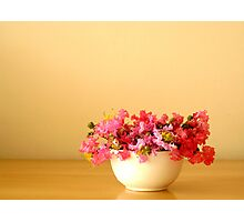 Bowl of Flowers Photographic Print