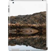 Wilderness Reflection iPad Case/Skin