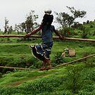 Balancing Life by Neeraj Nema