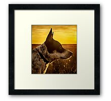 Angel Dog Framed Print