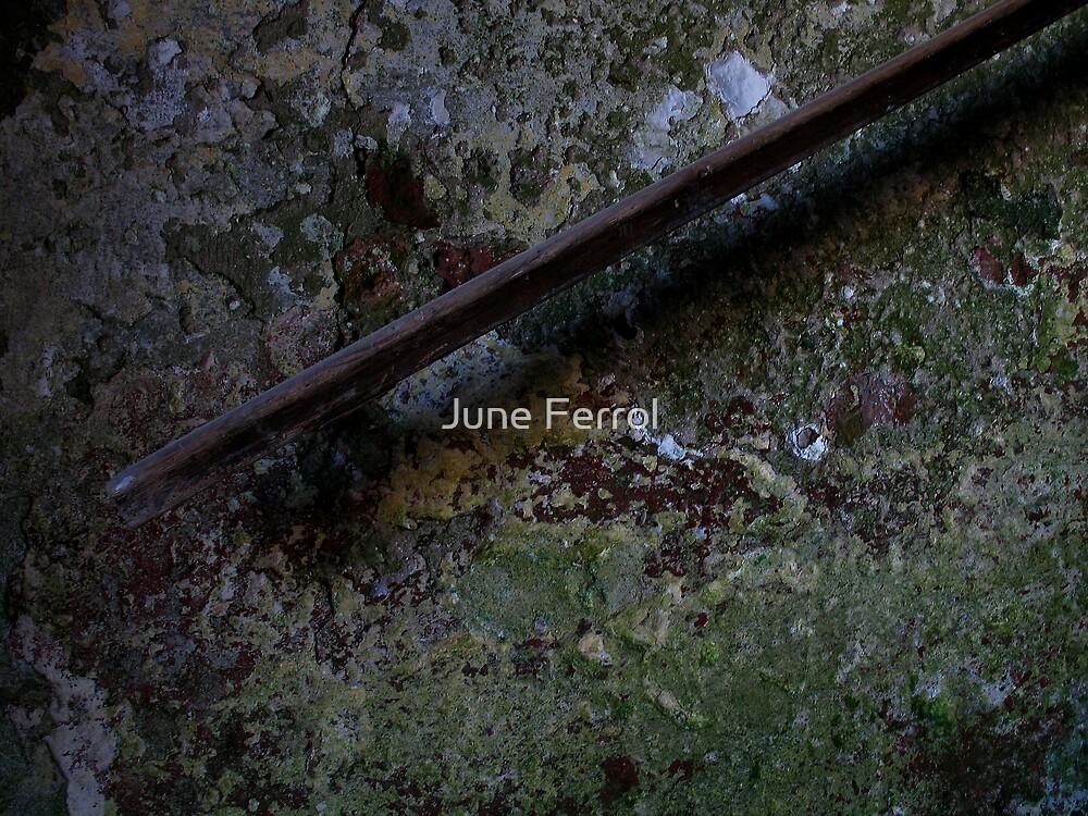 LEAN ON ME by June Ferrol