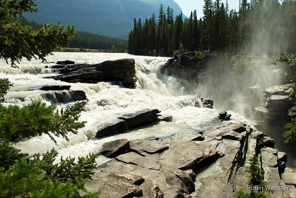 Athabaska Falls I by Robin Webster