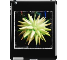 Bordered Paper Star Ball iPad Case/Skin