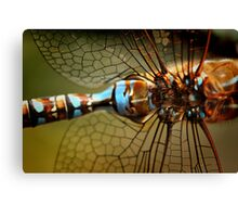 Dragonfly Patterns Canvas Print