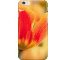 Multicolors tulip iPhone Case/Skin