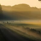 More morning enchantment by jchanders