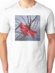 Hibiscus flower in razor wire Unisex T-Shirt