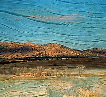 Wooden Scenery by Barbara Manis