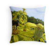Bee's World - honeybee close-up, vista of flowers Throw Pillow