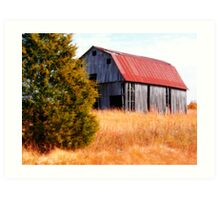 ~Arkansas Barn~ Art Print