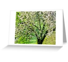 Springtime in white and green Greeting Card