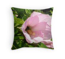 Swamp Rose- Mallow Throw Pillow