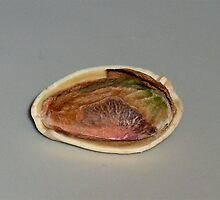 Pistachio by orangedana