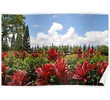 hawaiian plantation Poster
