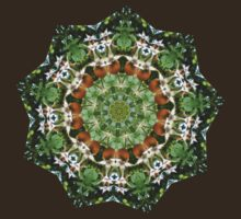 rose hips in the sunshine mandala by venusfire