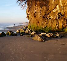 """Encinitas Beach Looking North At Sunset"" by Tim&Paria Sauls"