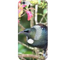 Are You Singing The Chorus -Tui - NZ iPhone Case/Skin