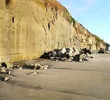 """Cliffs At Encinitas Beach"" by Tim&Paria Sauls"