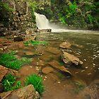Abrams Falls by Rick Gomez