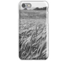 Wheat field iPhone Case/Skin